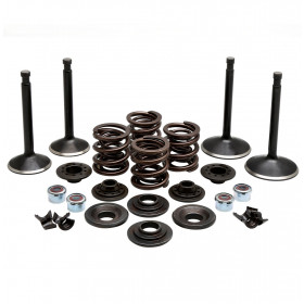 Valve and Spring Kits