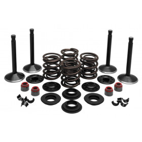 Valve and Spring Kits, 1948-1965 HD PANHEAD ENGINE KIT