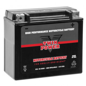 High-Performance Maintenance Free Battery